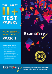 Printed 11+ NVR test papers with answers and thorough explanations