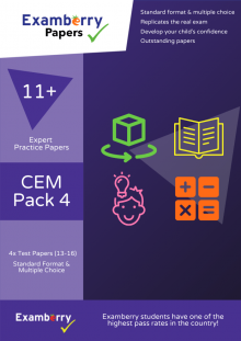 CEM papers for 11+ learning