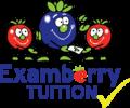 ExamberryTuitionSmallC